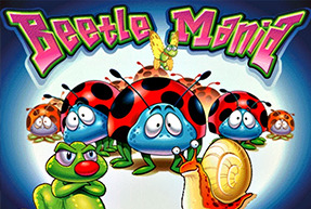 Beetle Mania | Slot machines Jokermonarch